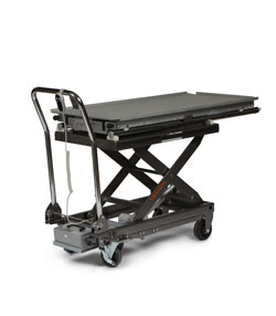 Electronic Patient Lifts