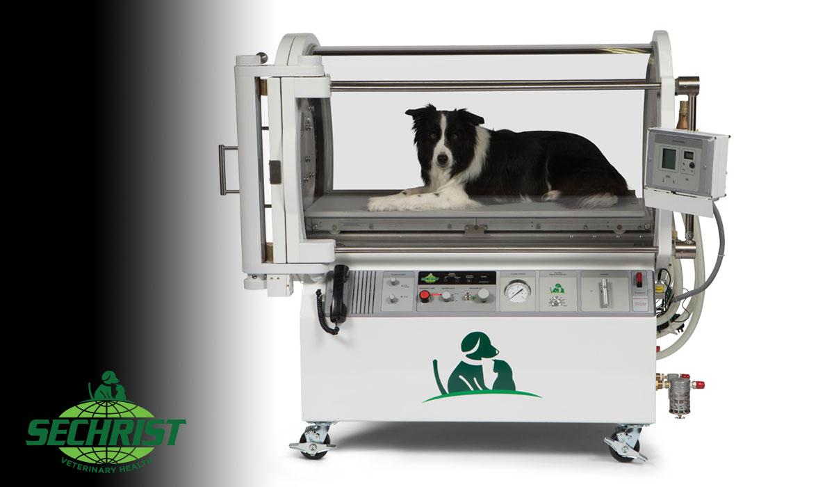 Hyperbaric Animal Chamber