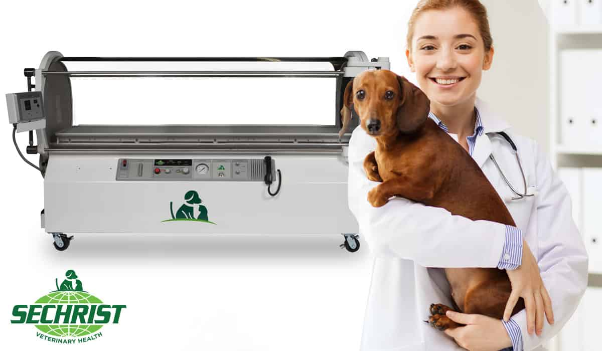 Hyperbaric Medical Solutions for Pets