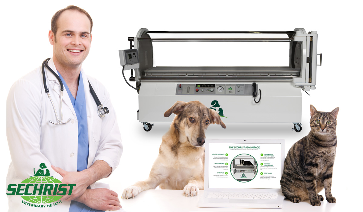Hyperbaric Medicine for Pets