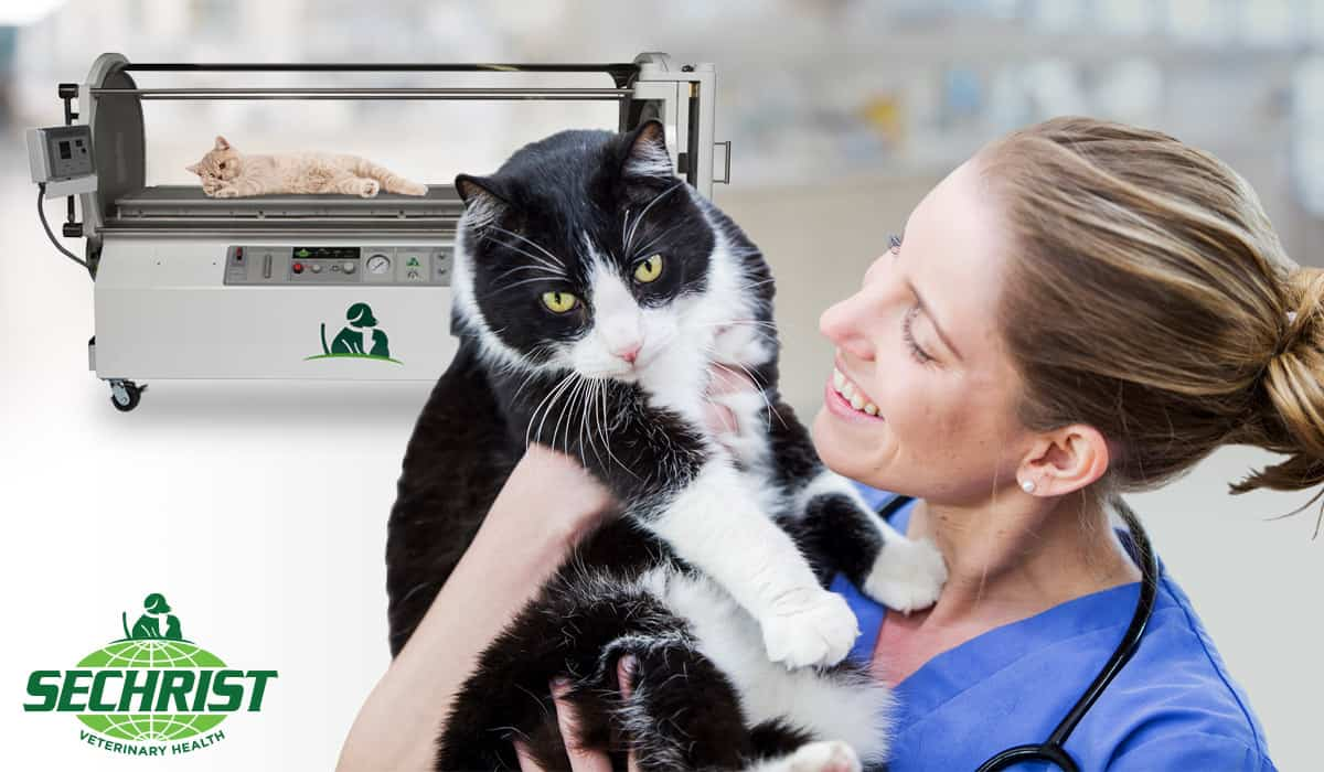 Hyperbaric Oxygen Chambers for Animals