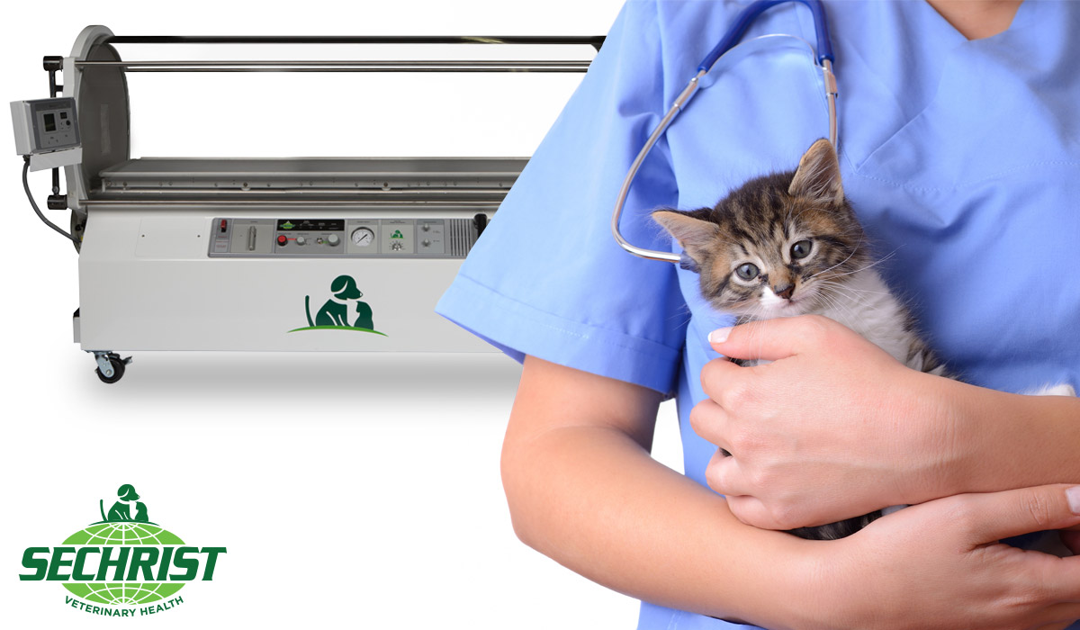 Hyperbaric Oxygen Therapy For Veterinarians