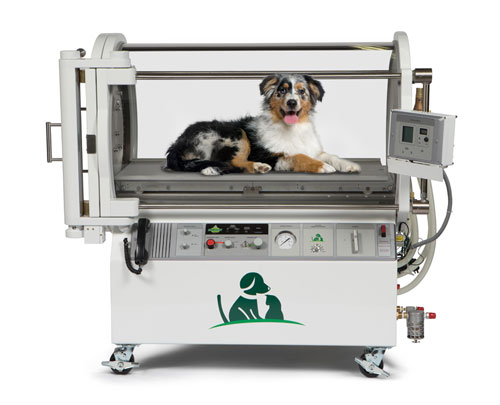 Hyperbaric Oxygen Therapy Investment for Veterinarians