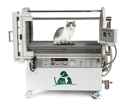 Cat Oxygen Chambers • Hyperbaric Oxygen Therapy for Cats