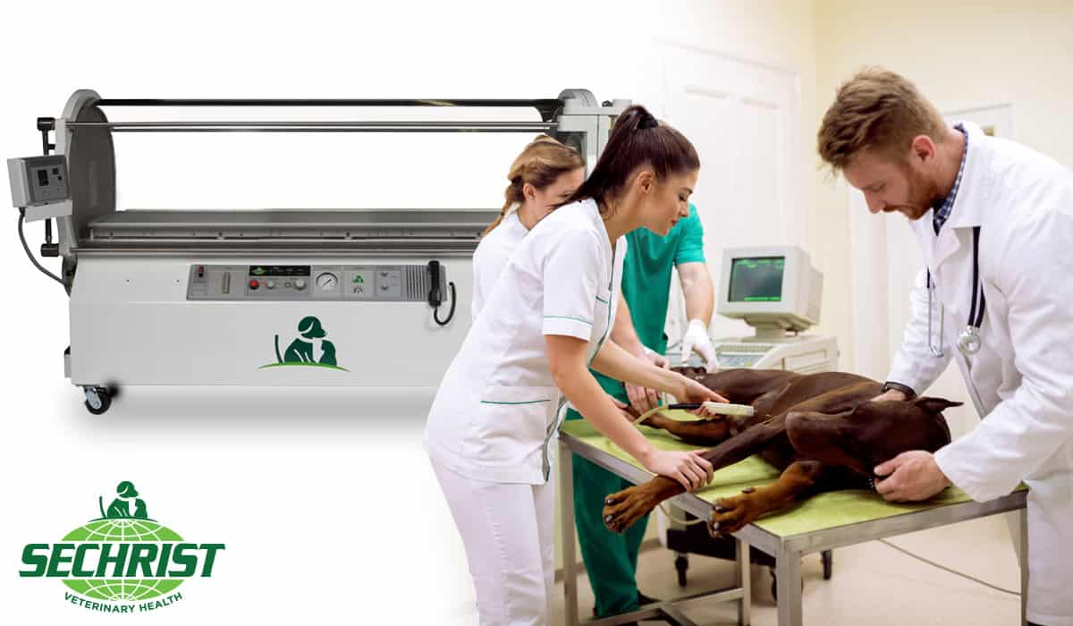 Purchase Hyperbaric Oxygen Chamber Installation and Training