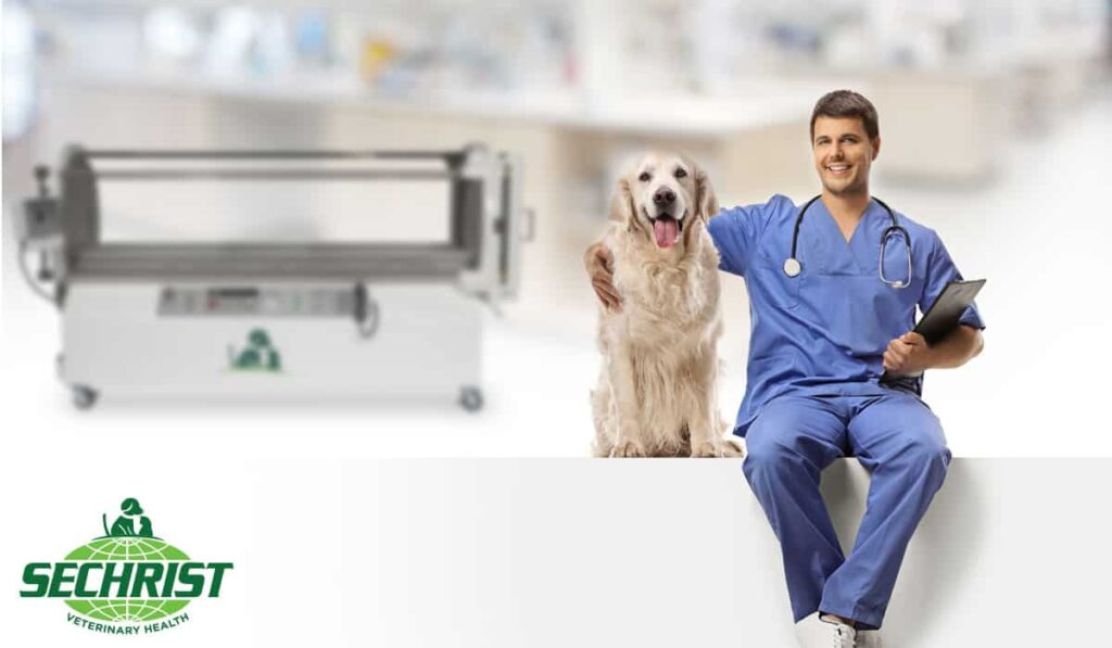 Purchase and Installation Considerations for Veterinarians HBOT