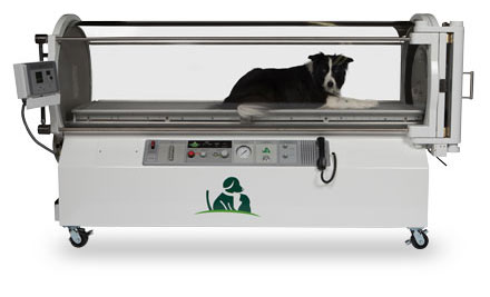 SV500 Hyperbaric Chamber