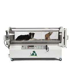SV500 Veterinary Hyperbaric Oxygen and ICU Chamber