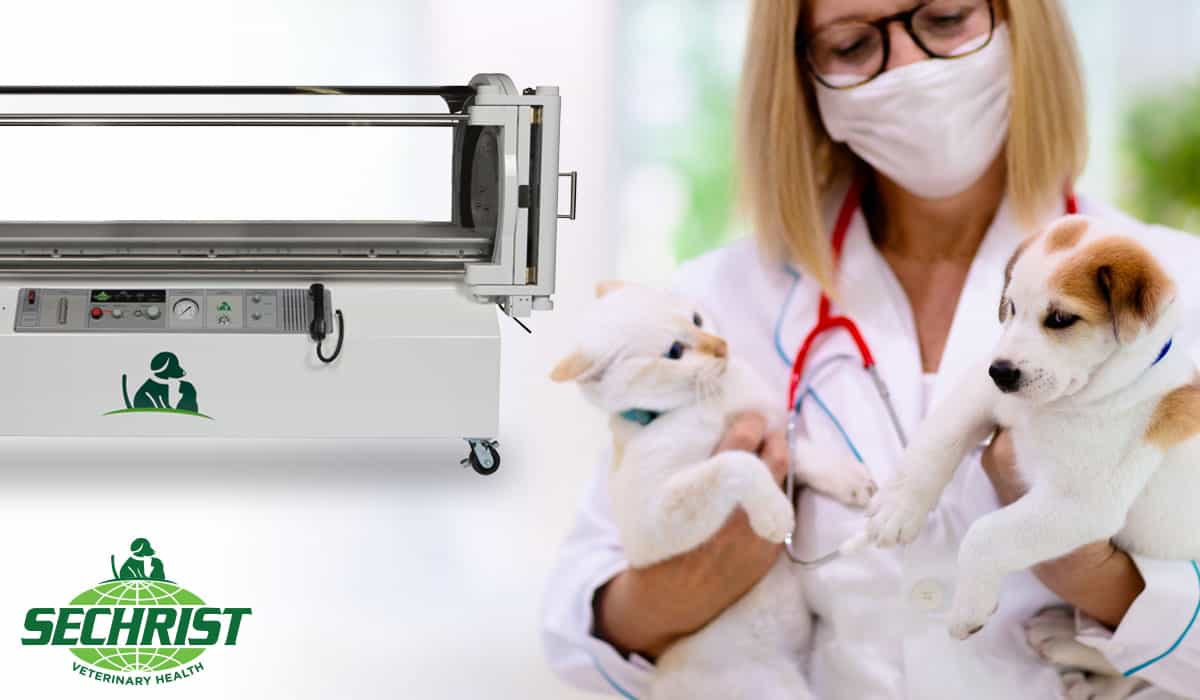Veterinarians are raising awareness about HBOT
