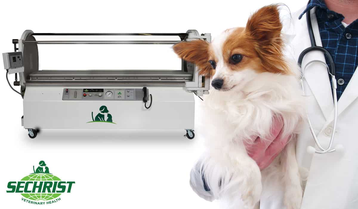 Veterinary Hyperbaric Chamber Suppliers
