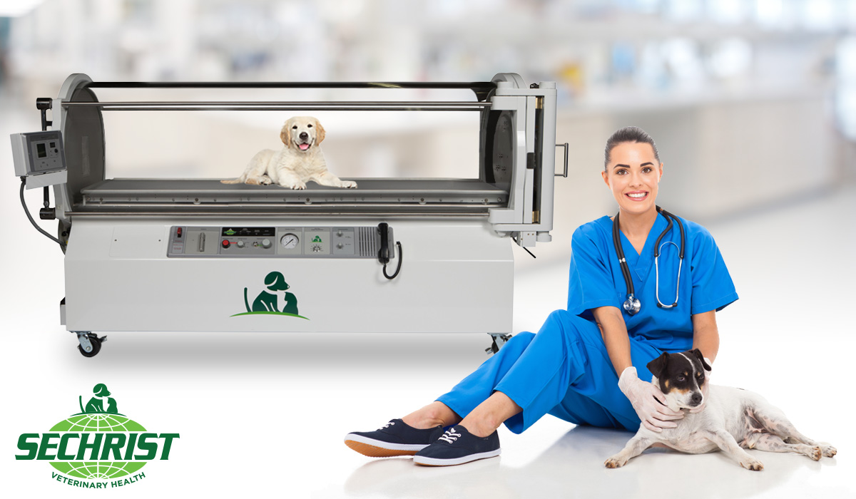 Veterinary Hyperbaric Oxygen Therapy